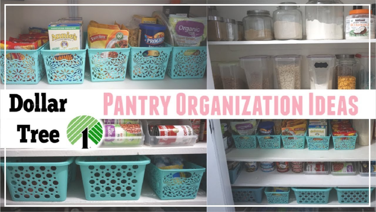 Dollar Tree Pantry Organization Ideas Budget Pantry
