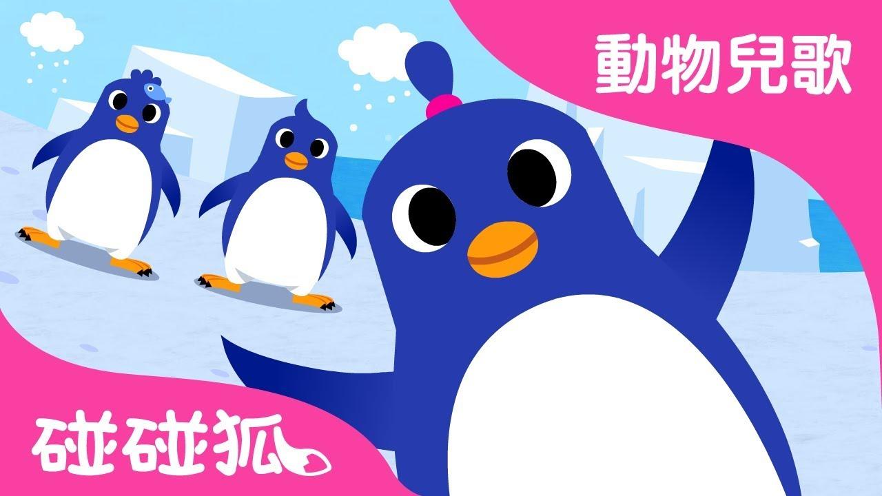 企鵝舞 | 動物兒歌 | 碰碰狐pinkfong!兒童兒歌