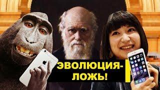 ЯПОНЦЫ НЕ ВЕРЯТ в теорию эволюции Дарвина!   Centaur no Nayami