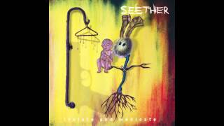 Seether - My Disaster