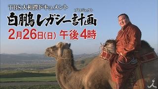 日曜ごご4時 『大相撲ドキュメント 白鵬レガシー計画 』 2月26日予告 ※...