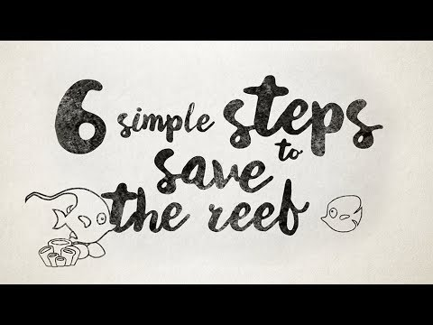 6 Simple Steps To Save The Reef