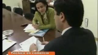 Personal Técnico de Comercio Exterior. Ocupaciones. SAE.