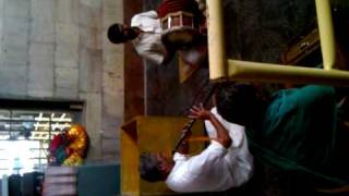 Temple music, south India jungle