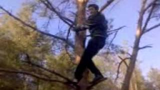 Блэйд в лесу