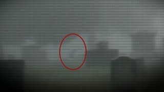5 Cemetery Creatures Caught On Camera & Spotted In Real Life!