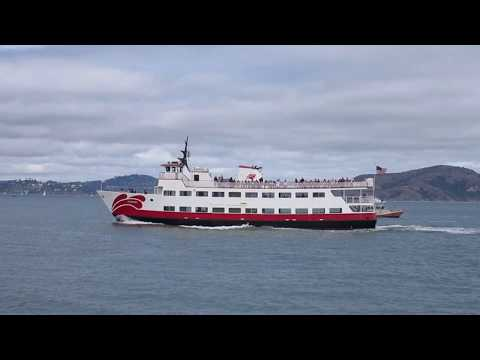 """Zalophus"" Ferry Red & White Fleet San Francisco Bay California"