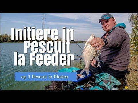 Initiere in pescuitul la feeder - ep.1 Pescuit la platica