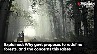 Why Govt Proposes to Redefine Forests, And The Concerns This Raises | Express Explained