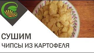 Картофельные чипсы с грибами на сушилке Изидри