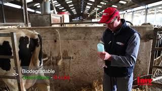 IMV Technologies искусственное осеменение коров