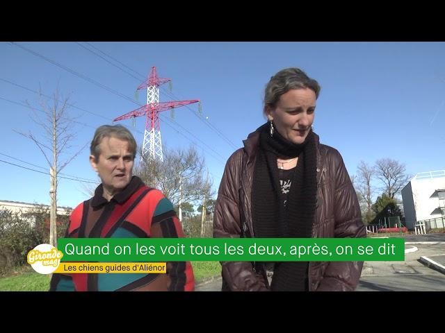Gironde Mag - Les chiens guides de l'association Aliénor