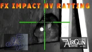 Air rifle pest control - NV ratting with the FX impact - pig farm rats