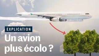 Planter des arbres pour compenser l'avion ?