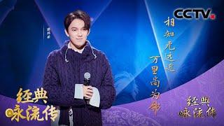[经典咏流传第三季]迪玛希为你唱经典《送韦城李少府》  CCTV