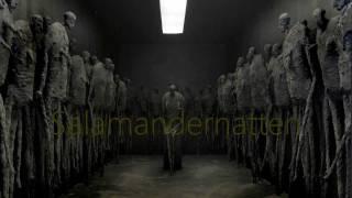 Salamandernatten / Salamander night - Kjell Erik Killi Olsen