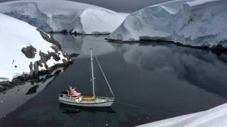 Video Sailing Antarctica: Whales, Penguins, and Icebergs on the Ultimate Polar Nature Expedition download MP3, 3GP, MP4, WEBM, AVI, FLV Juni 2018