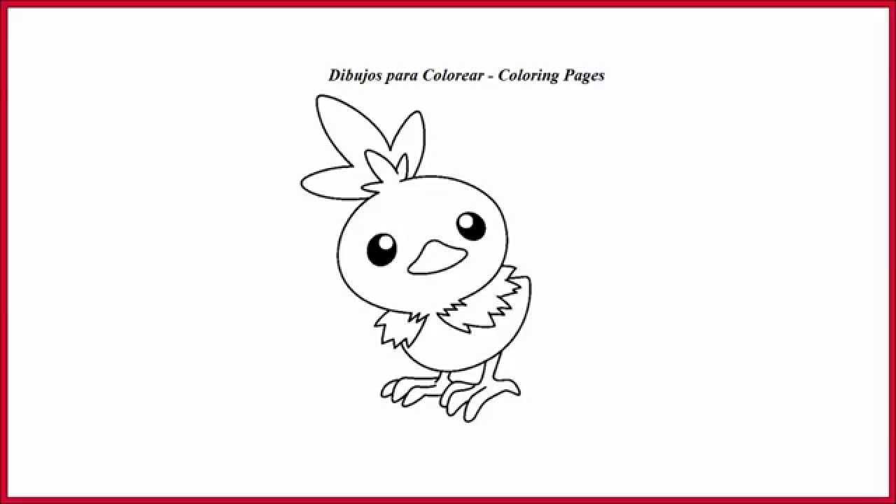 Torchic dibujo para colorear l Torchic drawing coloring - YouTube