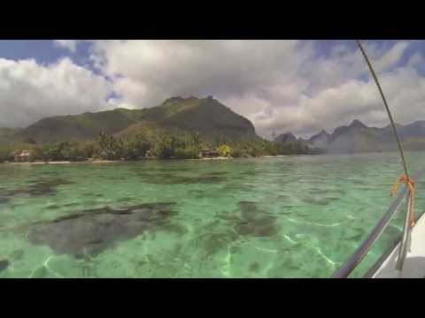 Paolo & Noura honeymoon french polynesia