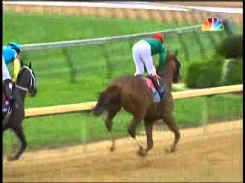 Animal Kingdom Wins 2011 Kentucky Derby