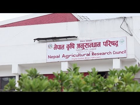 Documentary of Nepal Agricultural Research Council NARC