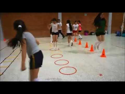 Sesión de preparación física voleibol.