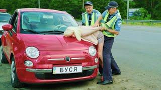 Безумная женщина на дороге! Гаишники задержали тупую блондинку | АВТО ПРИКОЛЫ 2021