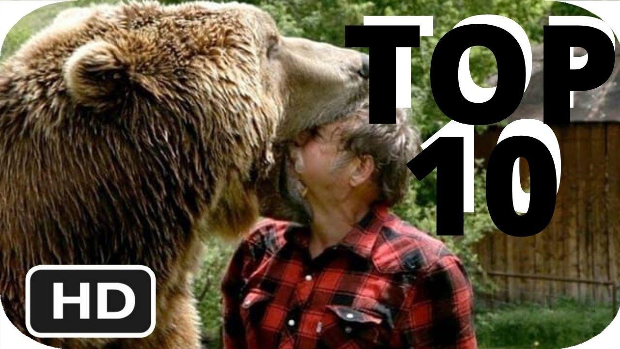 Download TOP 10 GO-PRO ANIMAL ENCOUNTERS - REACTION - PCSGIRLS