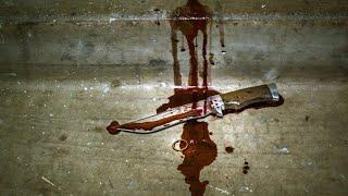 Кровавый урок: подробности убийства в московском колледже