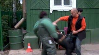 rottweiler attacks girl   caught on camera