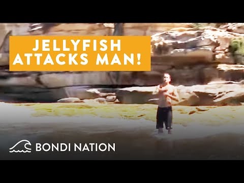 A Bad Day At The Beach - Jellyfish Attacks Man