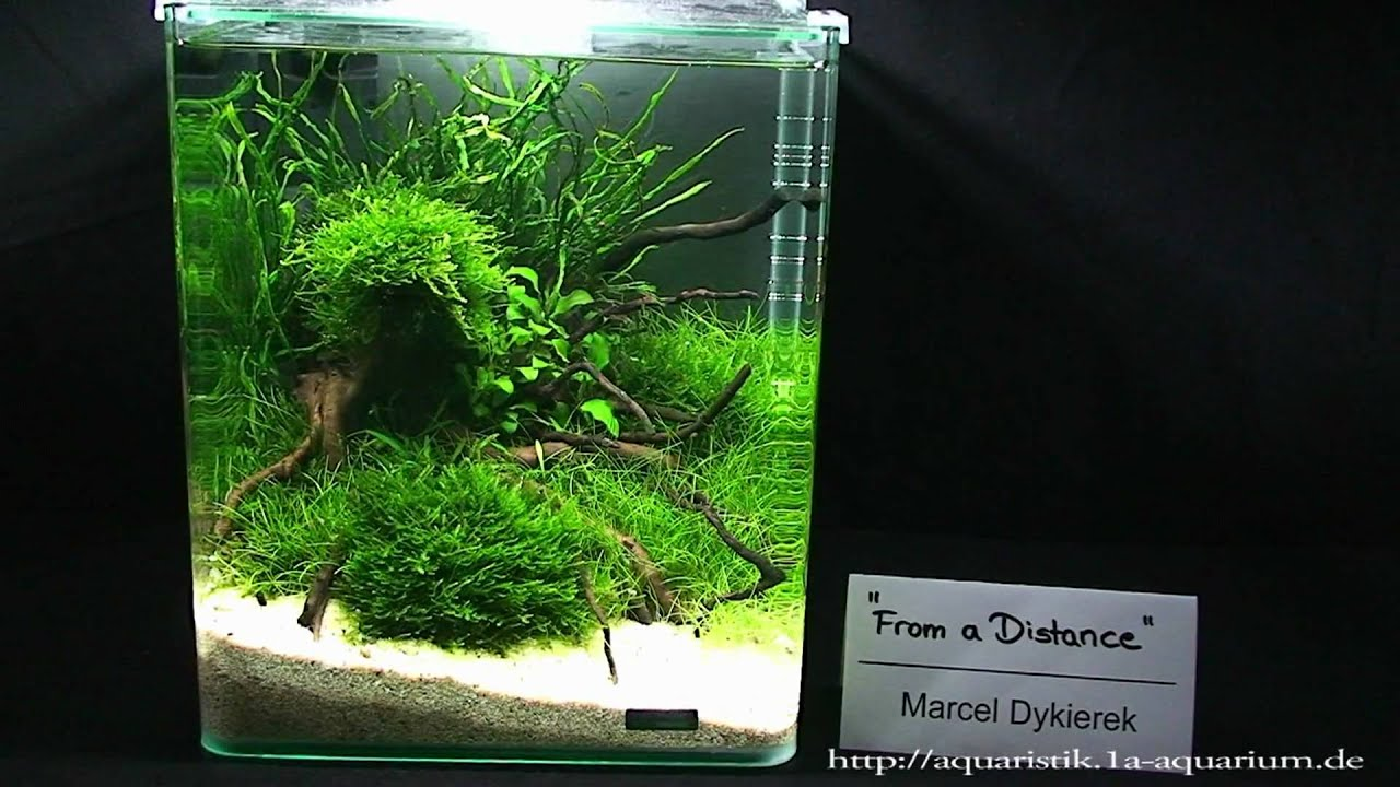 Exceptional Nano Aquascapes 2010 Hannover Part 1