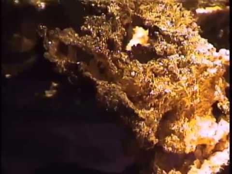 California State Mineral