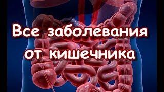 Все заболевания от кишечника - Воспаление кишечника, дисбактериоз