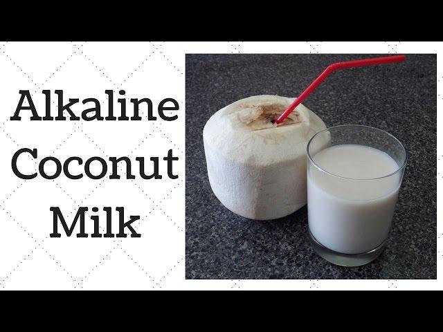 Coconut Milk Dr  Sebi Alkaline Electric Recipe
