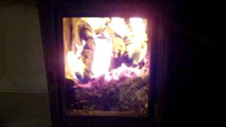 Michigan morning with a warm wood stove and songbirds (long version)