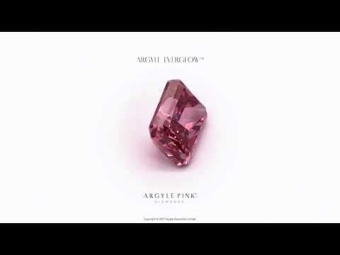 Argyle Pink Diamonds Tender 2017