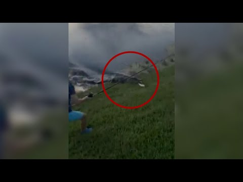 Alligator-rushes-out-of-water-steals-Florida-boys-fish-in-viral-video