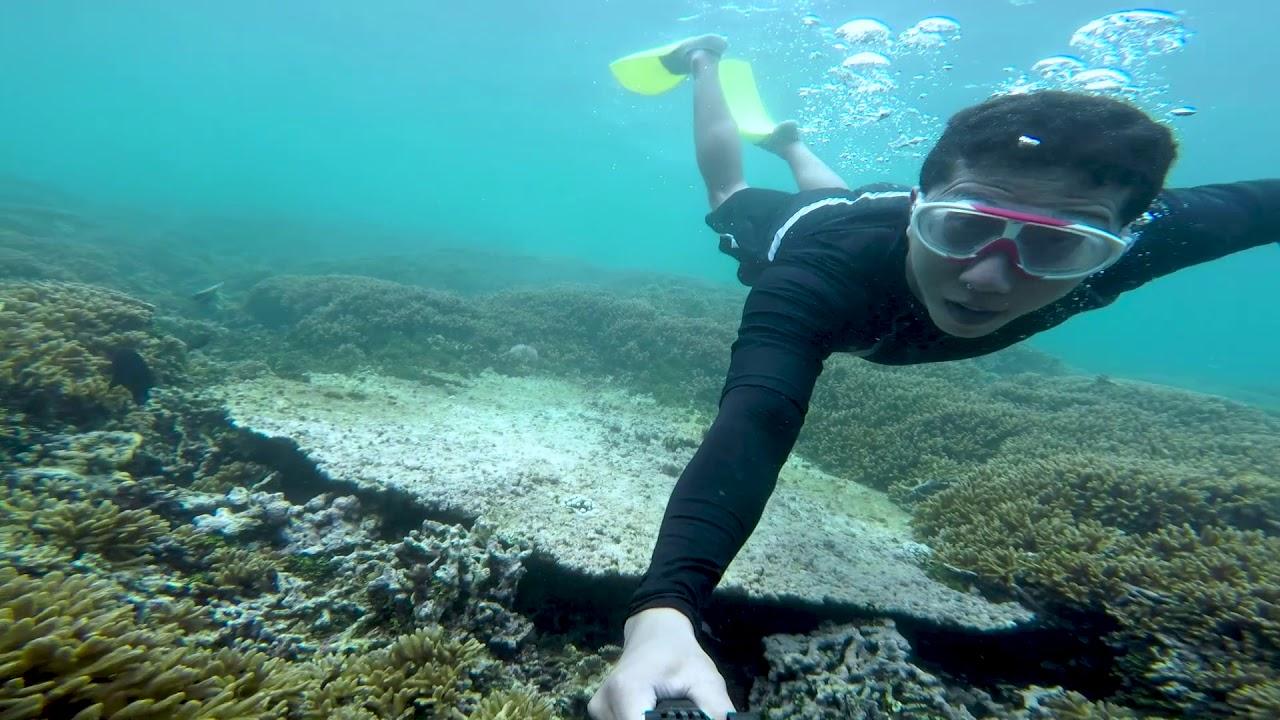 Agaanomali V Google Fun Dive Pramuka Island