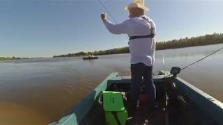 Рыбалка на Ахтубе 2018 База Селитрон. Тотальный джиг ! и куча судака
