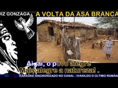 A Volta da Asa Branca -  Luiz Gonzaga - Karaoke