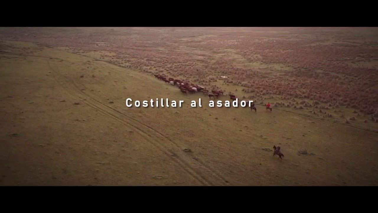 Video Costillar al asador - Raza Shorthorn