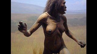 Тайны антропологии . Происхождение человека . Как трансформировались древние приматы.
