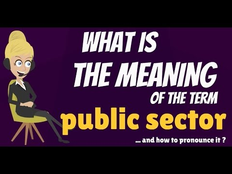 What is PUBLIC SECTOR? What does PUBLIC SECTOR mean? PUBLIC SECTOR definition