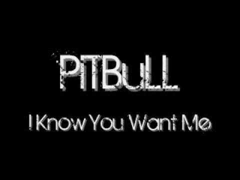 Pitbull I Know You Want Me With Lyrics