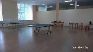 Санаторий Шинник - настольный теннис, Санатории Беларуси