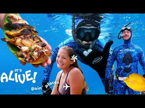 Brad Goes Spearfishing In Hawaii | It's Alive: Goin' Places | Bon Appétit