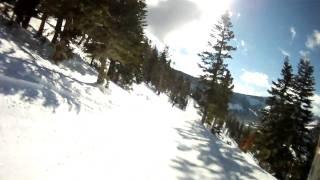 tree line ski