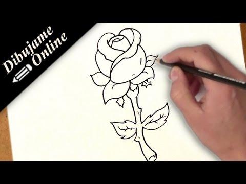 Como Desenhar Uma Rosa Como Desenhar Uma Rosa Passo A Passo
