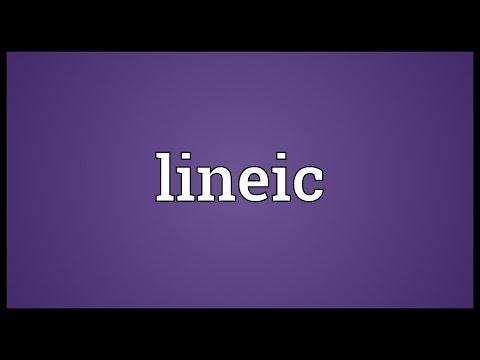 Header of Lineic